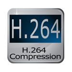 H.264 resolution on Cortex® security products